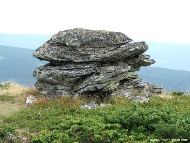 Rozdesti peak - #Cindrel_mountains #Transylvania