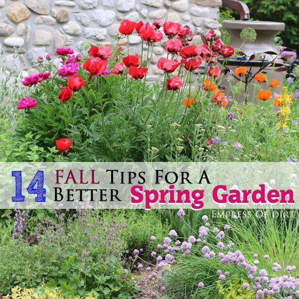 188 Best Gardening For Butterflies Images On Pinterest