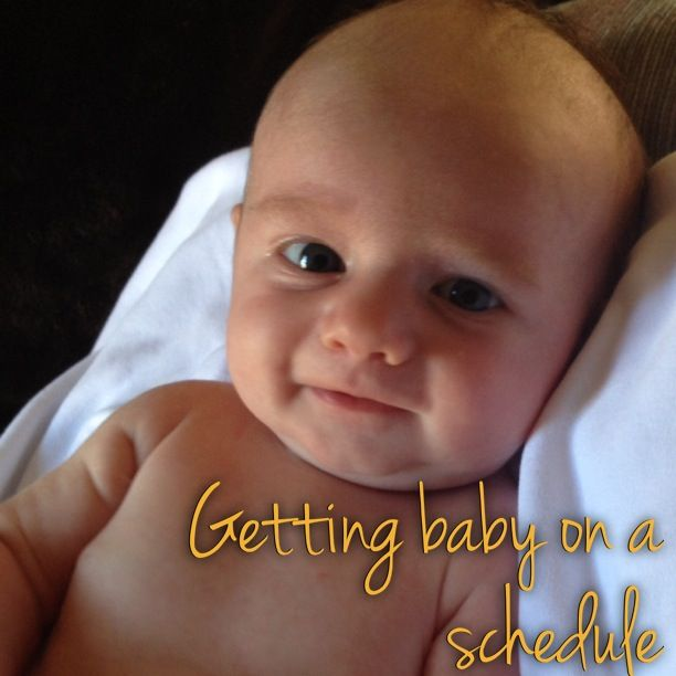 The Lovely Lane: Getting baby on a schedule   1 month old, 2 months old, babywise, feed/wake/sleep schedule