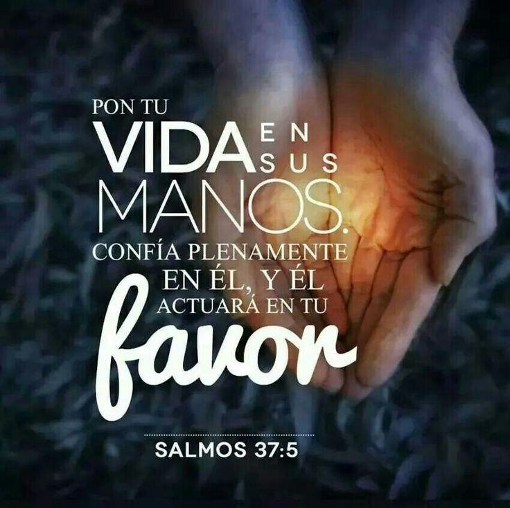 Salmo 37:4-5 Deléitate asimismo en Jehová, Y él te concederá las peticiones de tu corazón. Encomienda a Jehová tu camino, Y confía en él; y él hará.♔