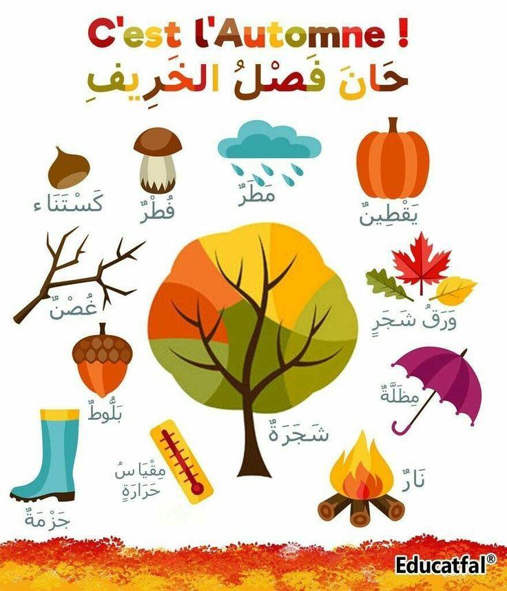 Day 15 Seasons In Arabic 5 Arabic Words A Day Learn Arabic With Safaa Apprendre L Arabe Langue Arabe Lettres De L Alphabet Arabe