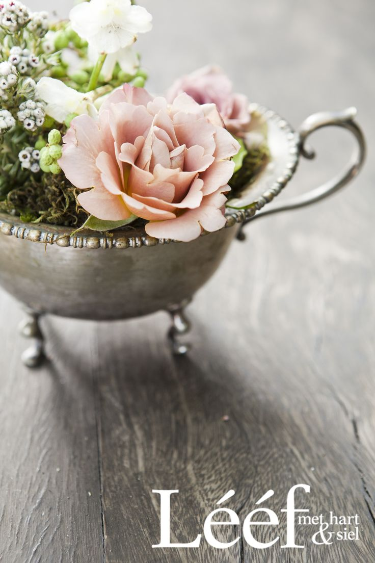 Winter, tyd/time, sagte pienk rose/soft pink roses. Foto: Candice Askham www.leef.co.za