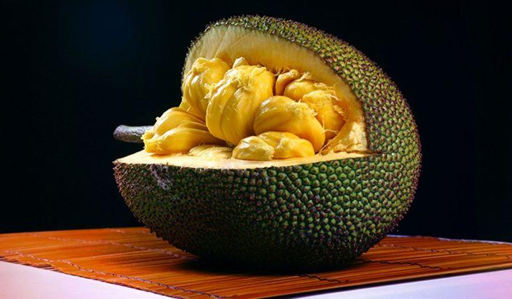 El Jackfruit (Artocarpus heterophyllus) es un fruto poco conocido que también se le conoce por jaca, jack, yaca, nangka o panapén y es una especie perteneciente a la familia de las moráceas. Es nativo de zonas del sur y sureste de Asia y se cree que se originó en el suroeste de los bosques pluviales de los Ghats occidentales en el subcontinente indio. Es la fruta arbolada más grande, alcanzando un peso de hasta 34 kilos. Aunque se ha cultivado en la India desde hace 3.000 a 6.000 años, este…