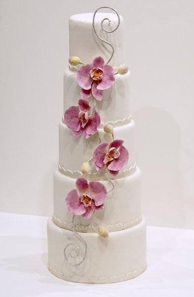 White, pink/purple wedding cake