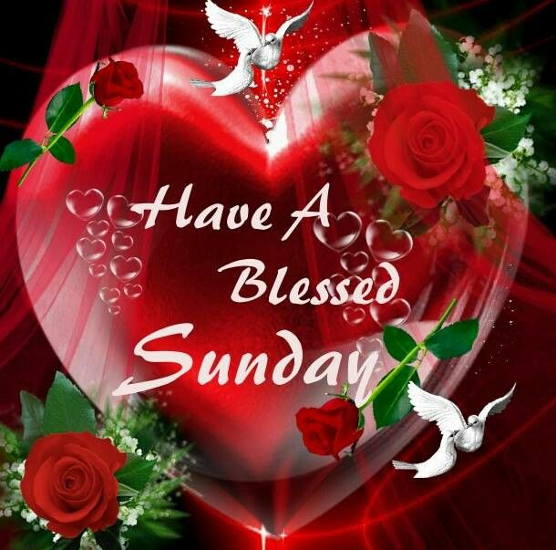 Blessed Sunday   GOOD MORNING/AFTERNOON/NIGHT SAYING ...