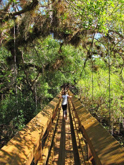 On the list to Visit: Myakka River State Park (Located nine miles east of I-75 in Sarasota, Florida.)