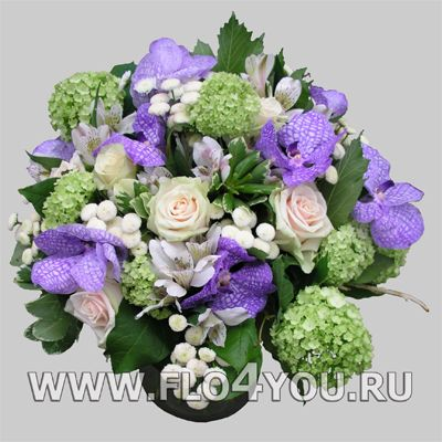 Flo4you - флористика и дизайн / Магазин / Букет 17016 Ванда - срочная доставка цветов