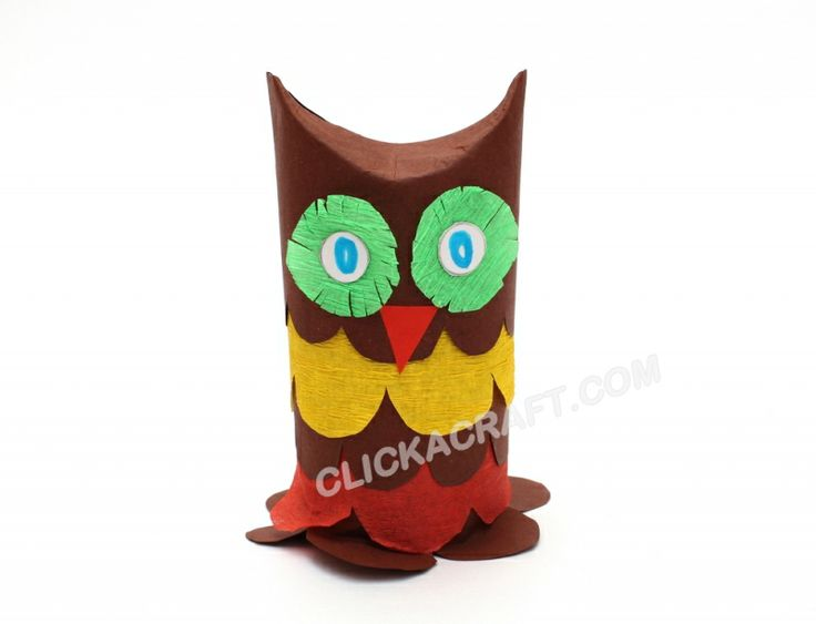 Cardboard Toilet Paper Roll Owl Craft