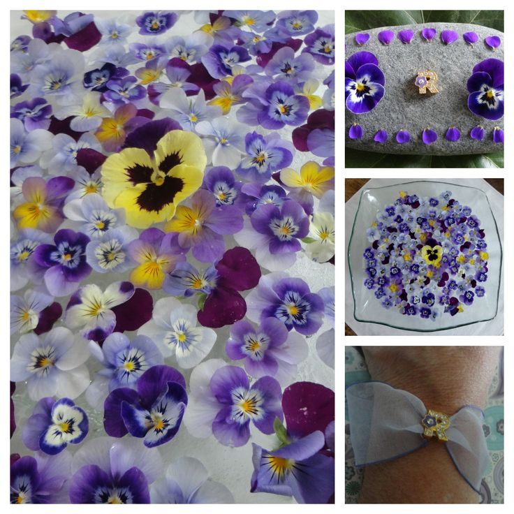 R, collage, violets, for R