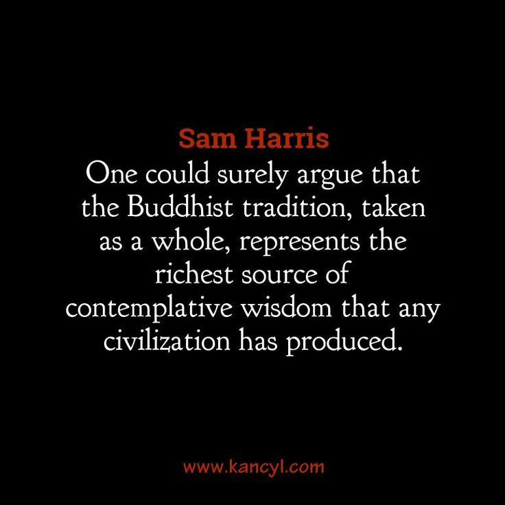 """One could surely argue that the Buddhist tradition, taken as a whole, represents the richest source of contemplative wisdom that any civilization has produced."", Sam Harris"