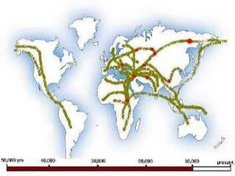 human migration factors When humans first ventured out of africa some 60,000 years ago, they left  genetic footprints still visible today by mapping the appearance and frequency of .