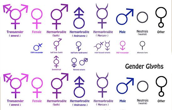 What pronoun do you use for transgender-6963