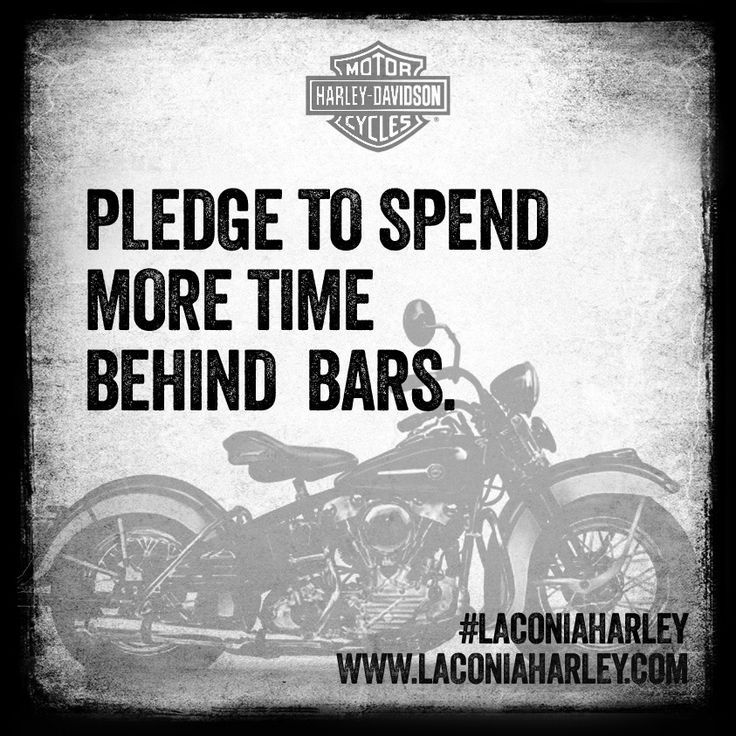 76 Best Laconia Harley Davidson Words Of Wisdom Images On