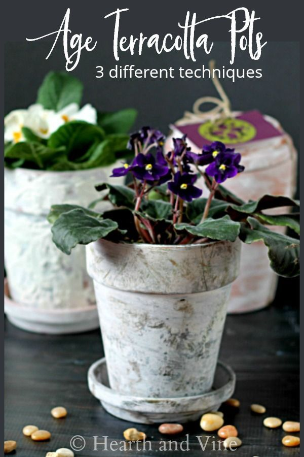 Get That Beautiful Rustic Patina Of Vintage Clay Pots When You Age Terracotta Learn 3 Diffe Ways To Make Them With Little Time Or Money