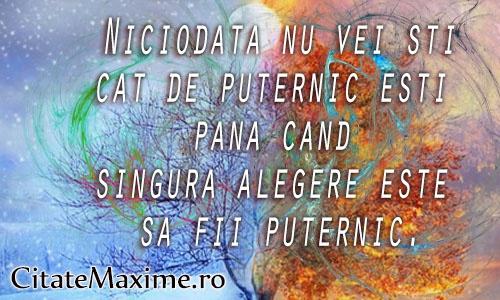"""""""Niciodata nu vei sti cat de puternic esti pana cand singura alegere este sa fii puternic""""  Iti place acest #citat? ♥Like♥ si ♥Share♥ cu prietenii tai.  #CitateImagini: #Putere #Alegeri #AFiPuternic  #romania #quotes  Vezi mai multe #citate pe http://citatemaxime.ro/"""