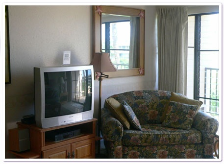 $125 per night condo in Maui, west side of island - Oceanview