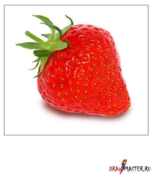 Рисуем клубнику » Бесплатные уроки рисования для начинающих в фотошопе, как научиться рисовать онлайн, видео уроки Фотошоп ( Photoshop ) на русском, учимся красиво рисовать на компьютере