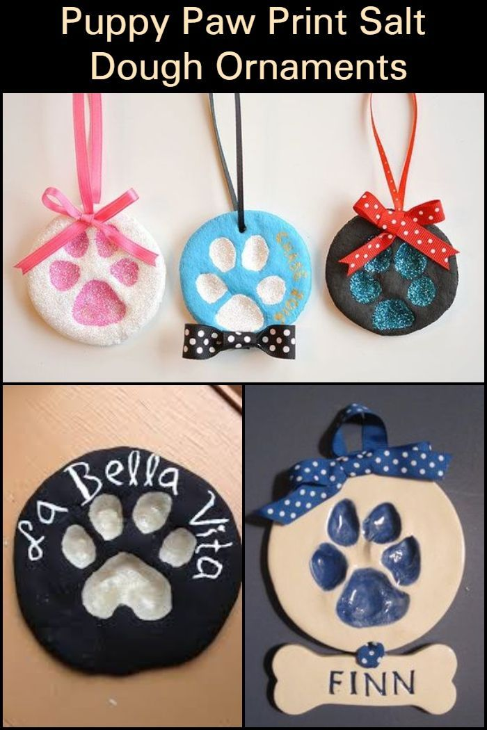 Make Art with Your Fur Babies by Creating Adorable…