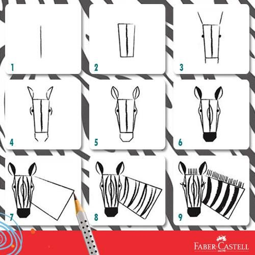 how to draw a zebra step by step easy