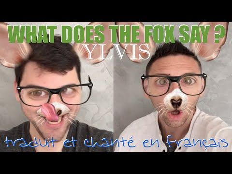 Ylvis - What does the fox say ? (traduction en francais) COVER - YouTube