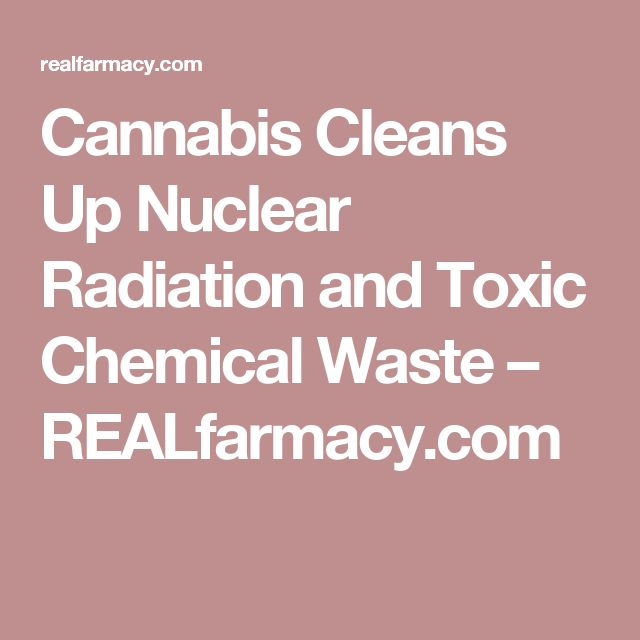 Cannabis Cleans Up Nuclear Radiation and Toxic Chemical Waste – REALfarmacy.com