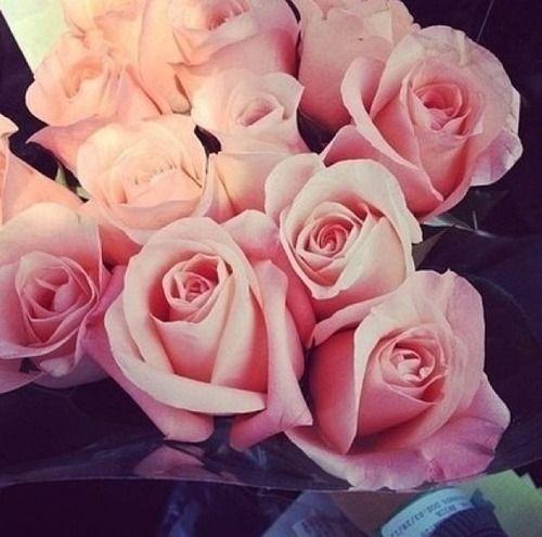 20 Besten Flower Bilder Auf Pinterest