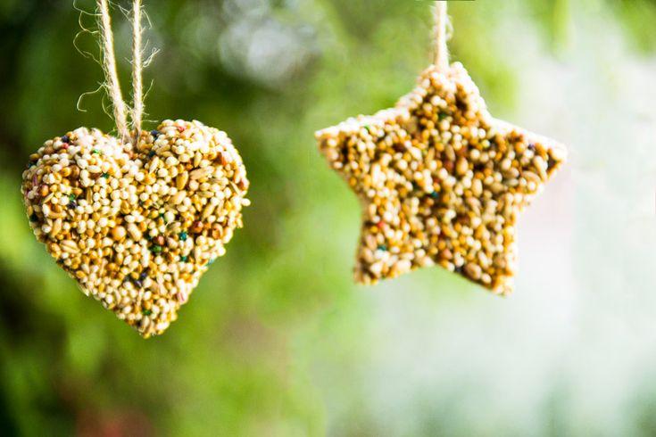 Vogelvoer vormen / DIY Birdseed Ornaments