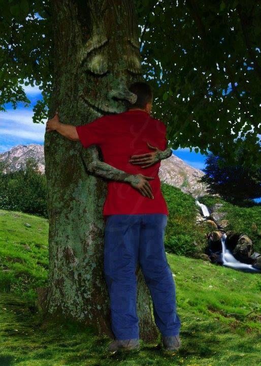 Aranyosi Ervin: Óvd a fákat  A Föld körül van egy légvár, a fák fújták kerekre. Az oxigén onnan árad felnőttre és gyerekre.  Benne mennyi álmot láthatsz, ha az eget kémleled. Csillagok közt szabadon száll az emberi képzelet.  Ezért jól vigyázz a fákra, amíg élnek, addig élsz, a levegőd tőlük kapod, vigyázz hát, ha jót remélsz!  Ne urald a természetet, legyél része, s légy szabad! Ha a fákat mégis bántják, emeld értük fel szavad!