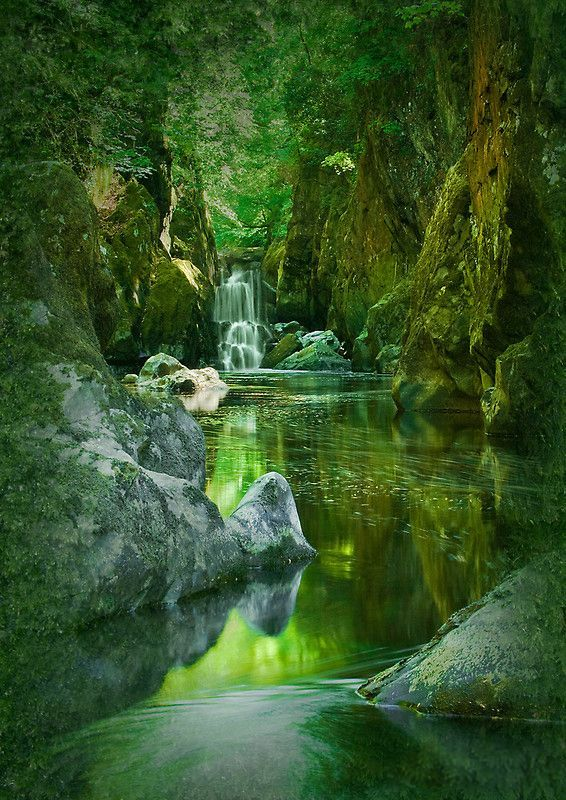 opticallyaroused:      The Fairy Glen, Conwy River near Betws-y-Coed, North Wales