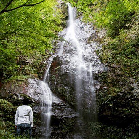 四滝目はもう少し入っていったところの権現の滝岩を無理矢理登ったら真下までいけて感動壮大やな #四国の滝 #権現の滝