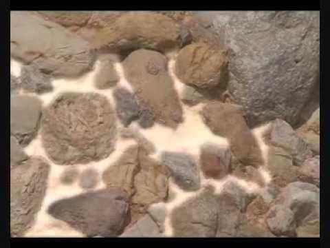 Rocas sedimentarias.
