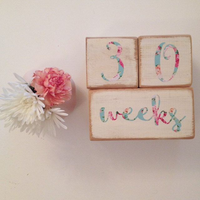 Unique Gift for Baby and PERFECT for taking great pics of your little bundle of joy Vintage Inspired Wood Custom Baby Age Blocks in Floral
