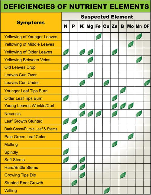 Handy Plant Nutrient Deficiency Diagnostic Chart For More