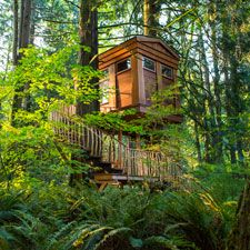 This romantic #treehouse hideaway is the Tree House Point Bed and Breakfast in Fall City, Washington. Enjoy yoga, concerts, or wander the hiking trails in this green retreat.