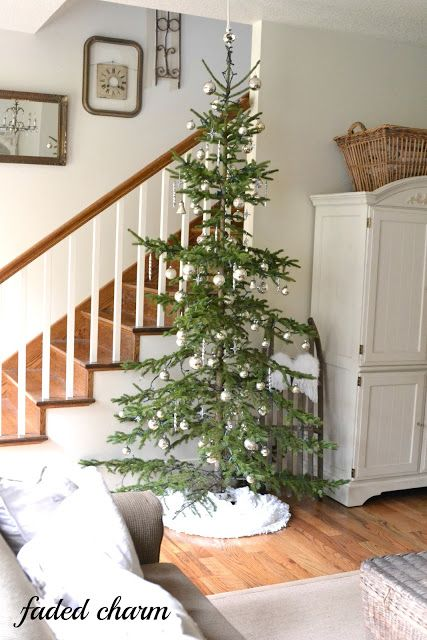 She got this tree from her own property, a tall skinny Charlie Brown tree, she called it. Perfect! Faded Charm: ~Holiday Home Tour 2012 & A Linky Party~