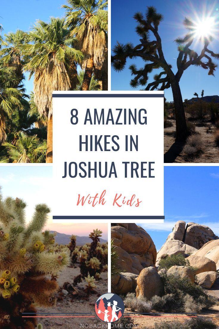 8 Awesome Joshua Tree Hikes at Joshua Tree National Park