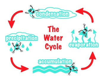free water cycle diagram great elementary teaching. Black Bedroom Furniture Sets. Home Design Ideas
