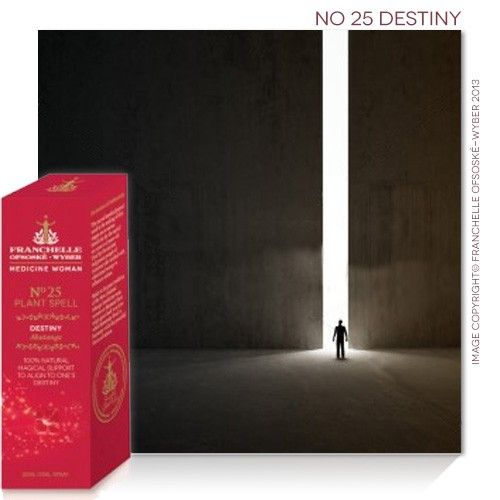 No 25 Destiny Spell
