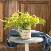 Found it at Wayfair.ca - Fern French Label Pot