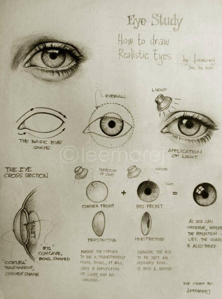 Eye Study - How to draw realistic eyes ✤ || CHARACTER DESIGN REFERENCES | キャラクターデザイン | çizgi film • Find more at https://www.facebook.com/CharacterDesignReferences & http://www.pinterest.com/characterdesigh if you're looking for: bandes dessinées, dessin animé #animation #banda #desenhada #toons #manga #BD #historieta #sketch #how #to #draw #strip #fumetto #settei #fumetti #manhwa #anime #cartoni #animati #comics #cartoon || ✤