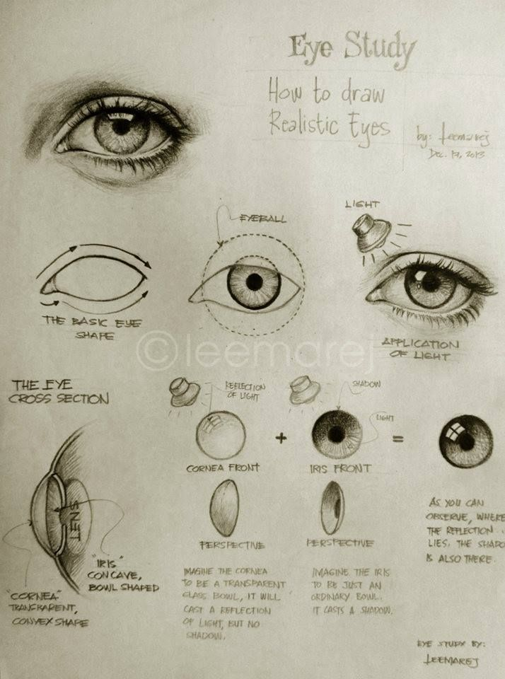 Eye Study - How to draw realistic eyes (Thank you, @Olivia García García García García Powers !)