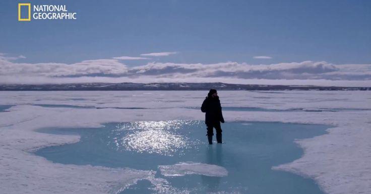 Before The Flood: Punto di Non Ritorno è il docufilm con Leonardo DiCaprio che affronta il tema del cambiamento climatico e dell'impatto sul pianeta. Guardalo ora