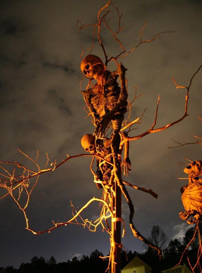 skeletons outdoor halloween decorations