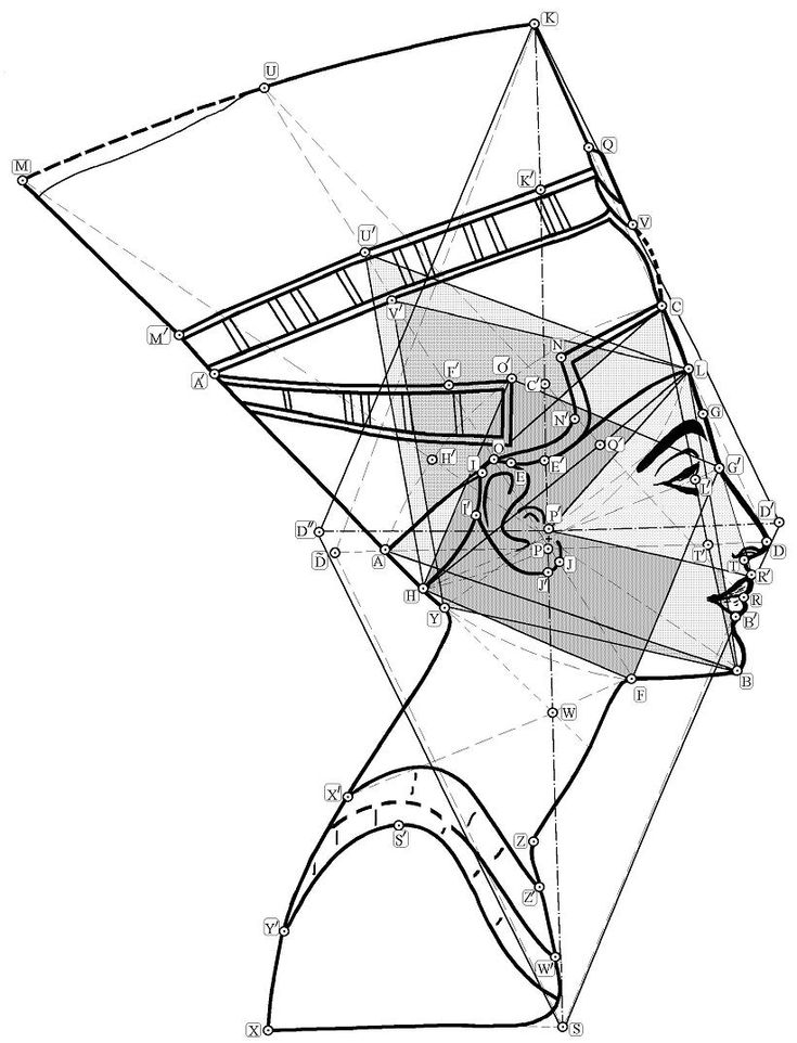 mathematics of beauty: demonstration of the golden ratio. Nefertiti, bust, proportion