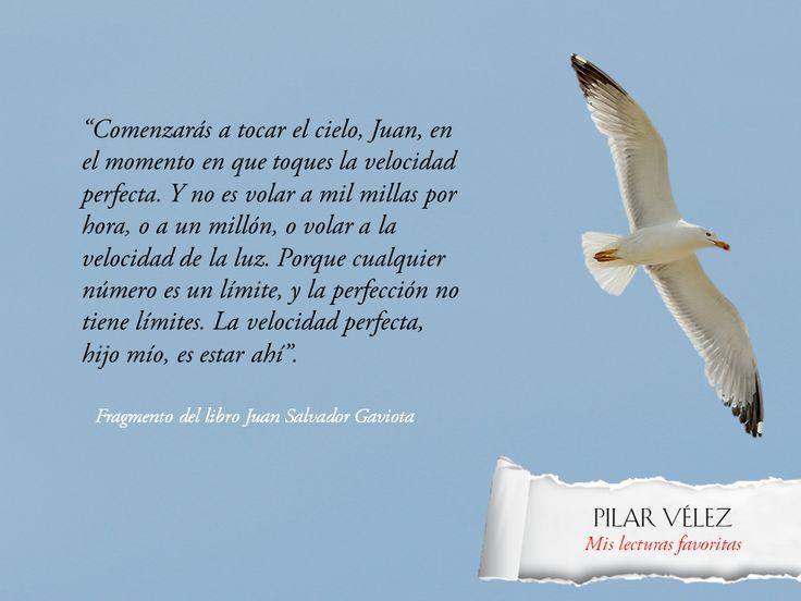 Libros inolvidables: Juan Salvador Gaviota