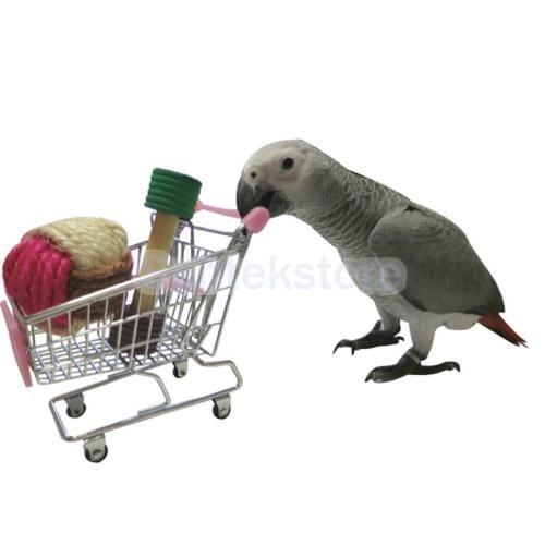 Pet-Bird-Parrot-Toy-Supermarket-Shopping-Cart-Intelligence-Growth-Training