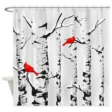 Image result for PICTURES birch trees in winter