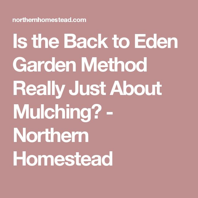 Is the Back to Eden Garden Method Really Just About Mulching? - Northern Homestead