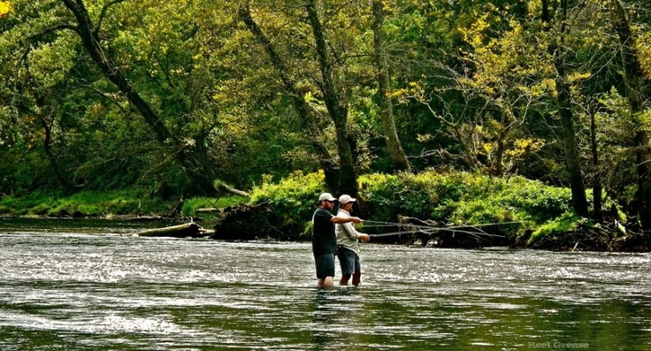 17 best images about into the woods we go on pinterest for Fly fishing arkansas