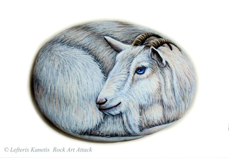 Hand Painted Stone Goat Portrait ! Is Painted with high ...